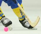 Хоккей с мячом. Правила игры FIB