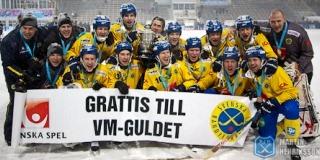 Чемпион мира 2012— сборная Швеции