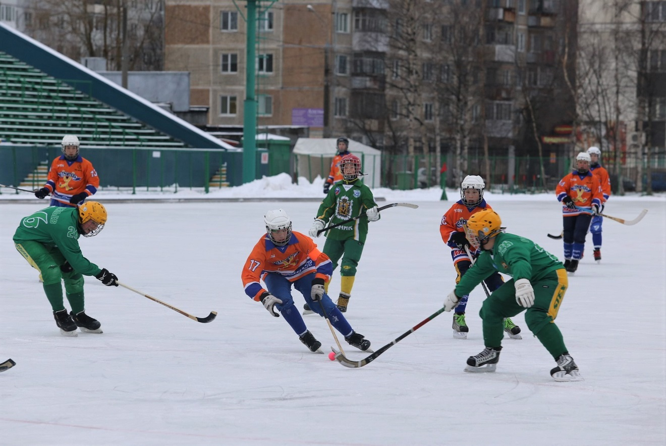 Фото dvinanews.ru.